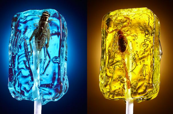 foodista dramatic bugfilled lollipops by lucas zarebinski