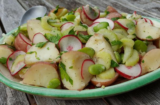 Red Potato Salad with Fava Beans and Radishes