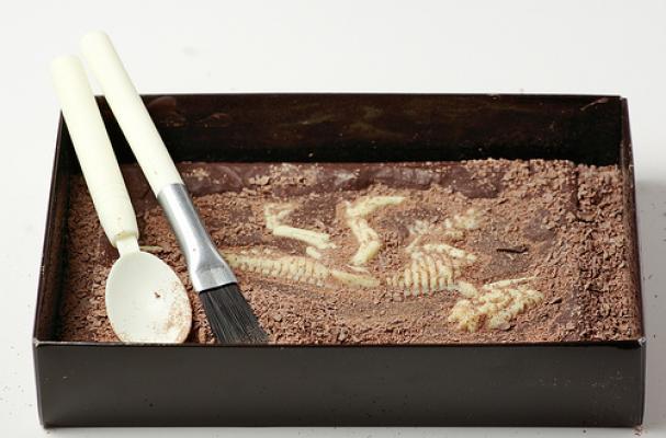 Jurassic Chocolat