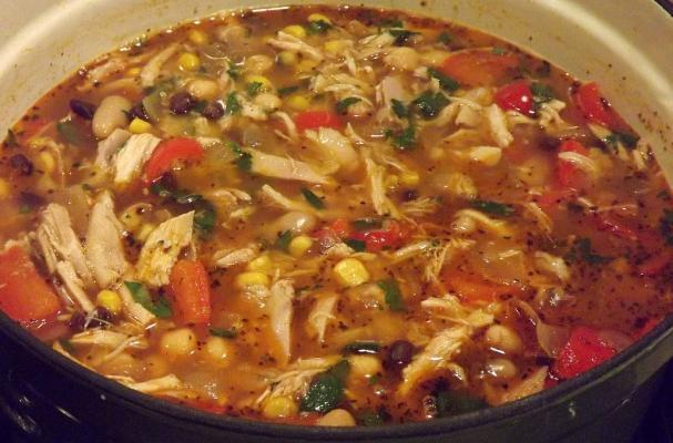Foodista Quick And Easy Chicken Chipotle Stew