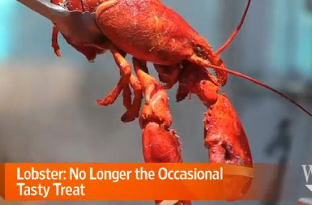 WSJ Lobster