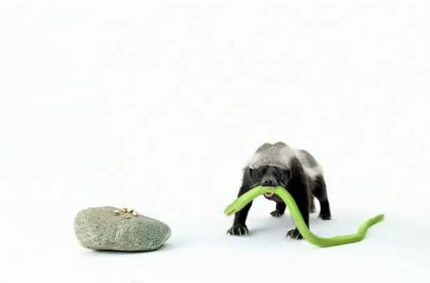 honey badger wonderful pistachios