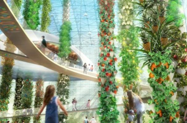 Aquaponic Urban Food Jungle