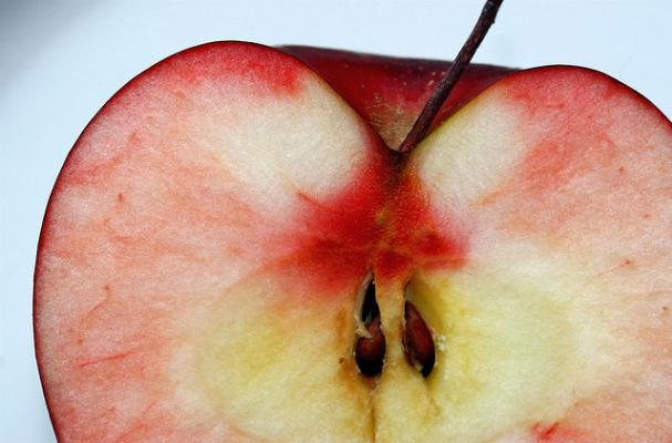 rosh hashanah apple
