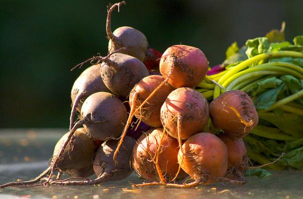 red and gold beets