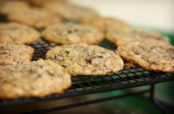 coconut cookies with chocolate chips