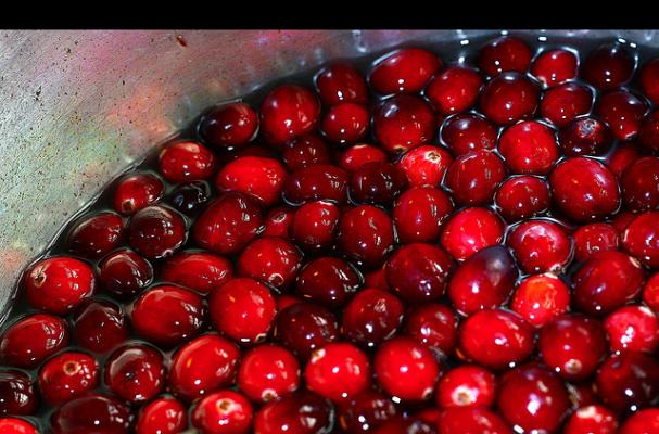 cranberries on their way to becoming sauce!