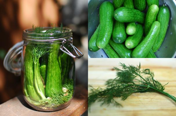 Foodista 5 Must Read Blog Posts Pickling And Preserving