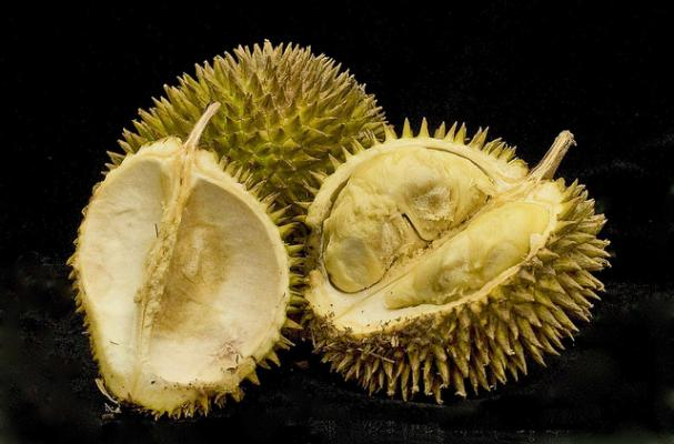 Foodista The King Of Fruits 5 Delicious Durian Recipes
