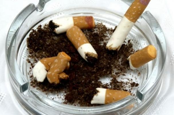 Edible Cigarette Butts