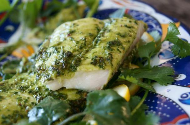 Foodista light and healthy chimichurri dover sole for Sole fish nutrition
