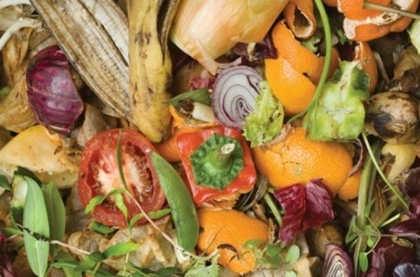 A study says celebrity chefs are fueling food waste.