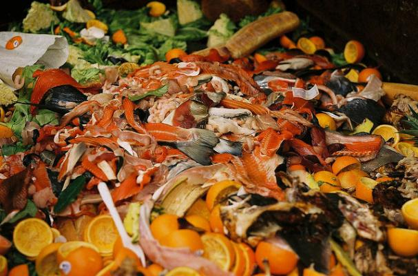 Infographic: Outlining the World's Food Waste