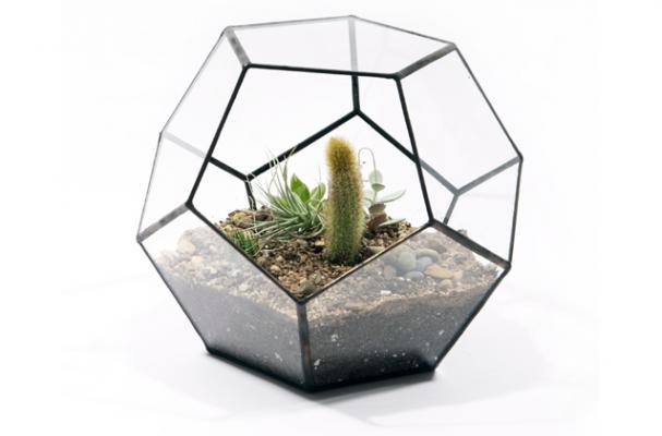 geodesic terrarium from Score + Solder