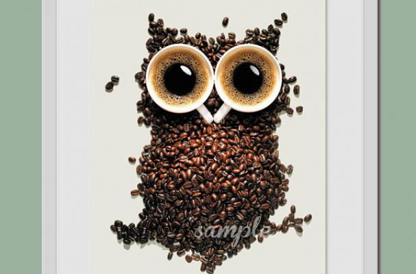 Foodista Coffee Time Owl Is A Wide Eyed Nocturnal Print