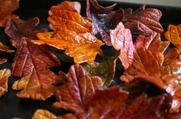 edible autumn leaves