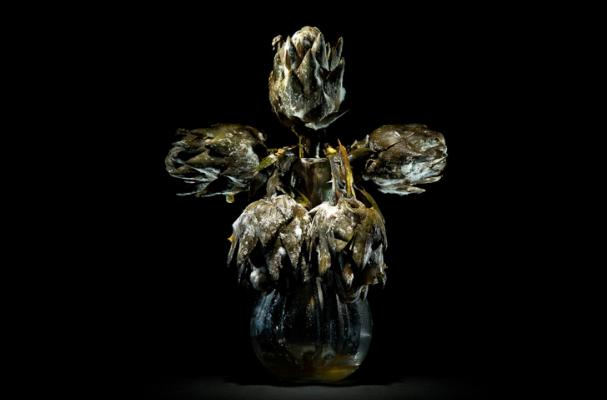 Foodista Klaus Pichler S Photos Of Rotting Foods
