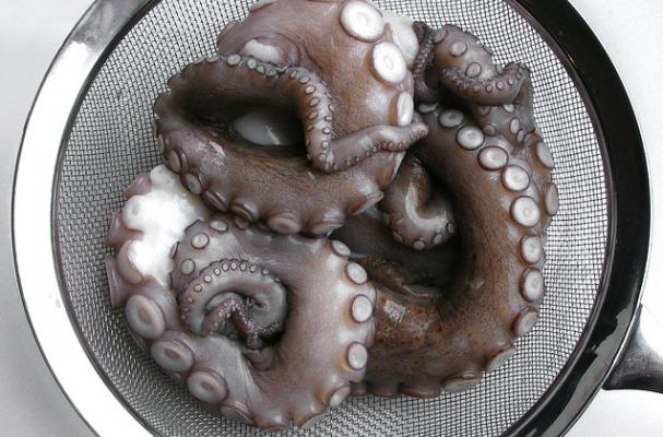 octopus and nebbiolo