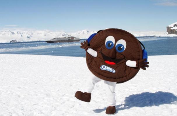 Oreo in Antarctica