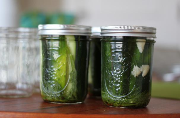 homemade DIY dill cucumber pickles