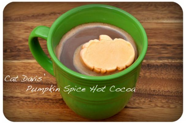 Cat Davis' Pumpkin Spice Hot Cocoa
