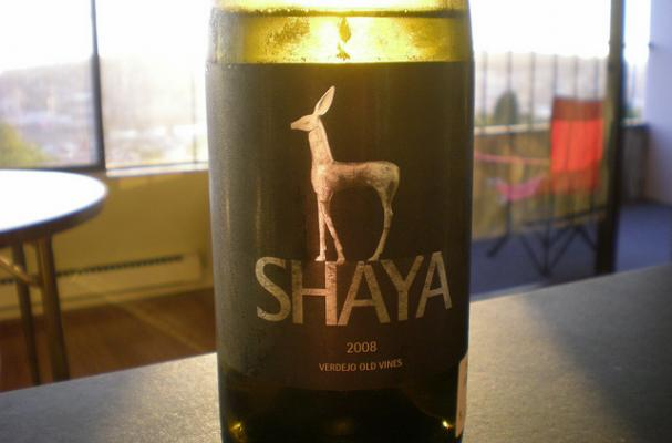 shaya verdejo spain