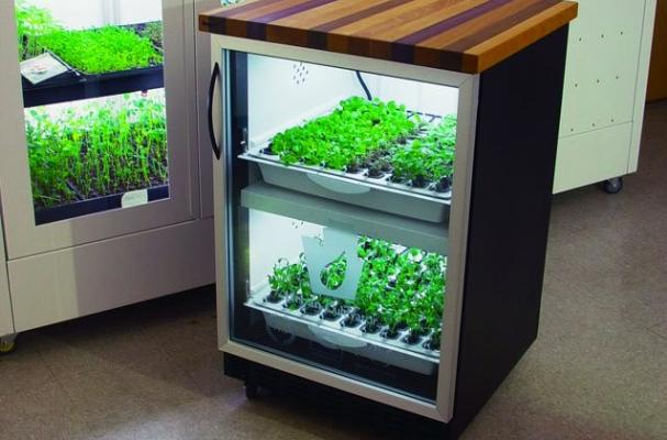 Urban Cultivator hydroponic growing system