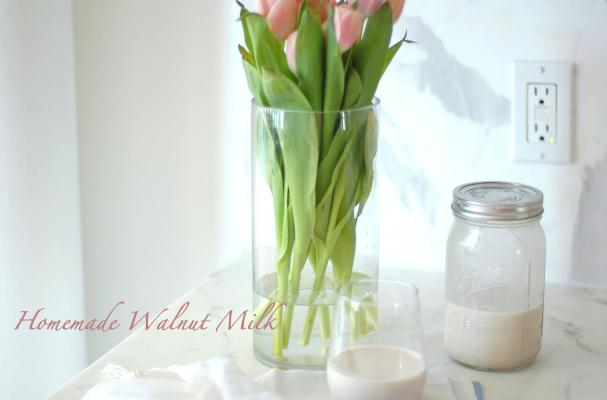 nut milk recipe
