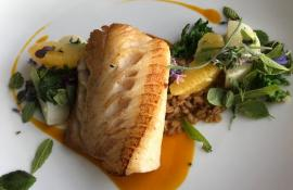 Seared Halibut with grains and greens